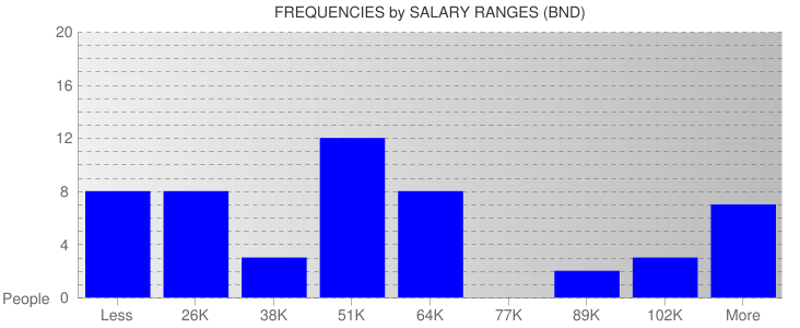 Average Salary Ranges For Brunei
