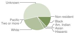 Chart of student race/ethnicity