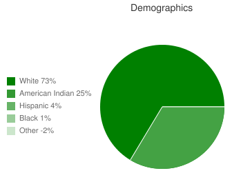 Mountain View-Gotebo Elementary School Demographics