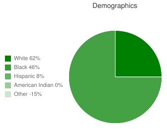 Phoenix Program Demographics