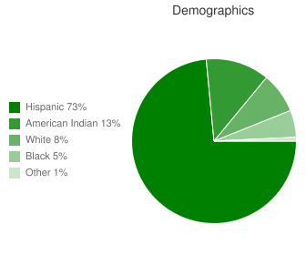 Gordon Bernell Charter Demographics