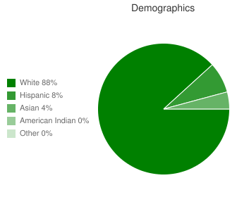 Mountain Way Demographics
