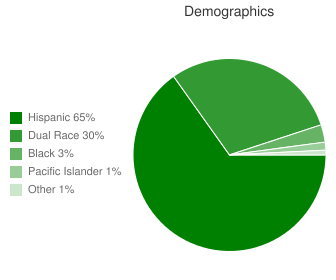 Costano Elementary Demographics