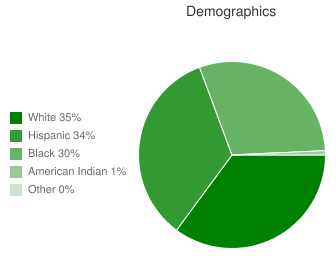Navasota High School Demographics
