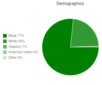 Collins High School Demographics