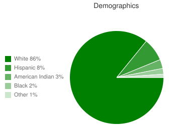 Lakeview Elementary Demographics