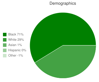 Jonesboro-Hodge High School Demographics