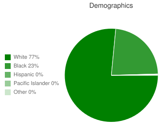 Pisgah Elementary School Demographics