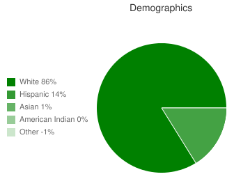 Southridge Middle School Demographics