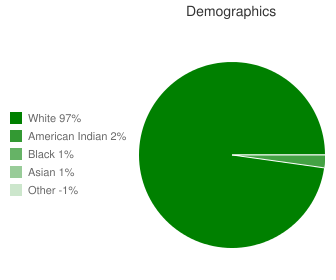 Burlington-Des Lacs Elementary School Demographics