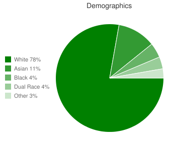 Oak Hill Elementary Demographics
