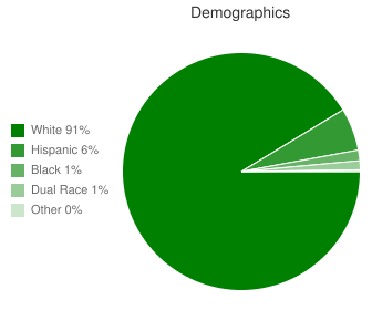 Walcott Intermediate Demographics