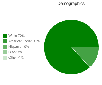 Weatherford High School Demographics