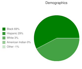 Summer Hill/Ruffin Road Elementary Demographics