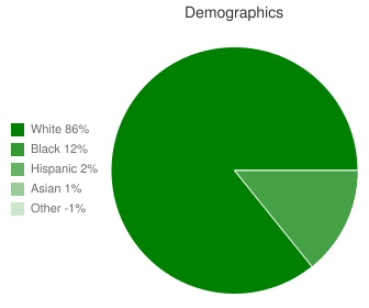 James Madison Middle School Demographics