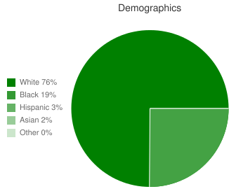 Southern Middle Demographics