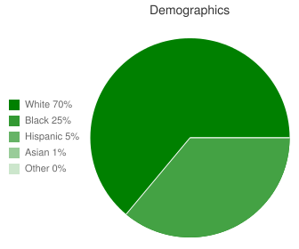 Kent County High Demographics