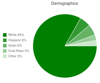 Blue River Elementary Demographics