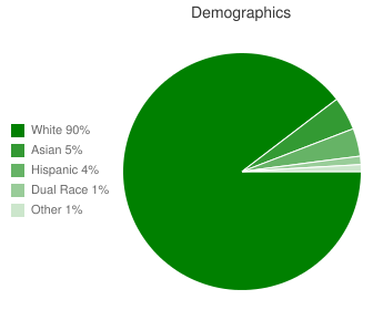 Rockaway Valley Demographics
