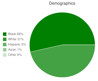 Phenix City Intermediate School Demographics