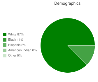 Pocahontas Middle Demographics