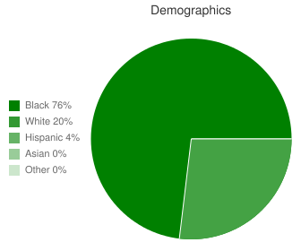 Chaney High School Demographics