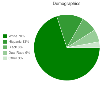 Salina High Central Demographics