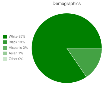 Franklin-Simpson High School Demographics