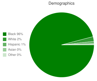 Chastain Middle School Demographics