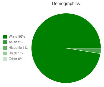Canfield High School Demographics
