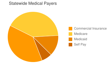 Statewide Medical Payers