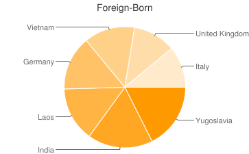 Most Common Foreign Birthplaces in Akron