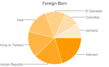 Most Common Foreign Birthplaces in Boston