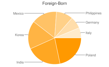 Most Common Foreign Birthplaces in60193