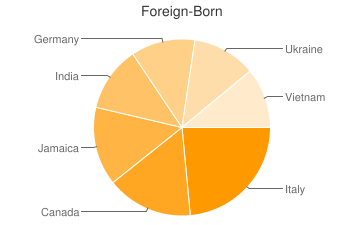 Most Common Foreign Birthplaces in Rochester