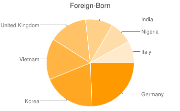 Most Common Foreign Birthplaces in Bel Air