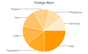 Most Common Foreign Birthplaces in48312