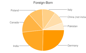 Most Common Foreign Birthplaces in44141