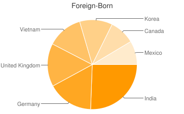 Most Common Foreign Birthplaces in Dayton