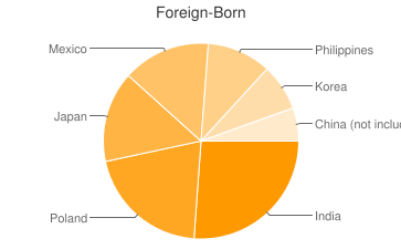 Most Common Foreign Birthplaces in Elk Grove Village