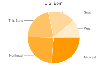 Most Common US Birthplaces in Nederland