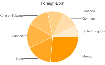 Most Common Foreign Birthplaces in Toledo