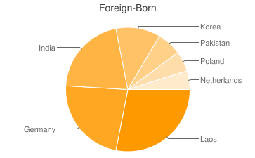 Most Common Foreign Birthplaces in54904