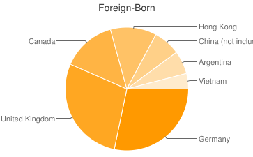 Most Common Foreign Birthplaces in Nederland