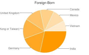 Most Common Foreign Birthplaces in Cincinnati