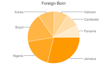 Most Common Foreign Birthplaces in Avondale Estates