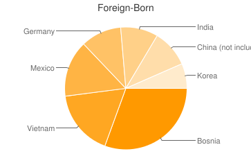 Most Common Foreign Birthplaces in Saint Louis