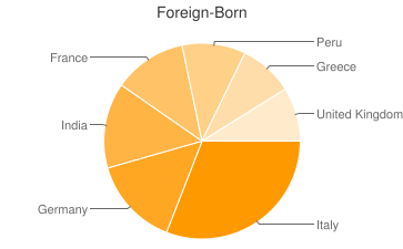 Most Common Foreign Birthplaces in Mount Sinai