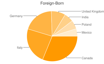 Most Common Foreign Birthplaces in48082