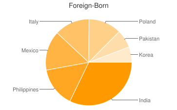 Most Common Foreign Birthplaces in Bloomingdale